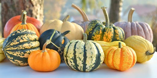 Produce Spotlight: Winter Squash