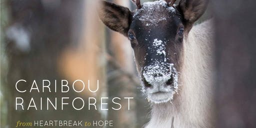 The Last Stand: Help our mountain caribou