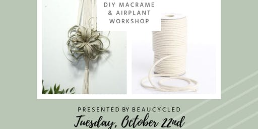 DIY Macrame & Air Plant Workshop