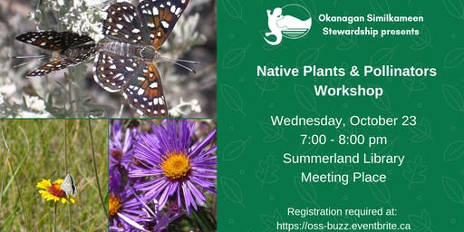 Native Plants and Pollinators Workshop