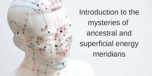 Discover the mysteries of the human energy meridian system