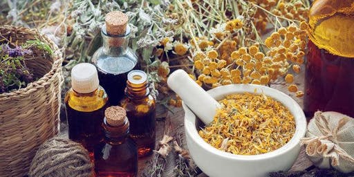 Free Herbs for Digestion Workshop with Artemisia Academy