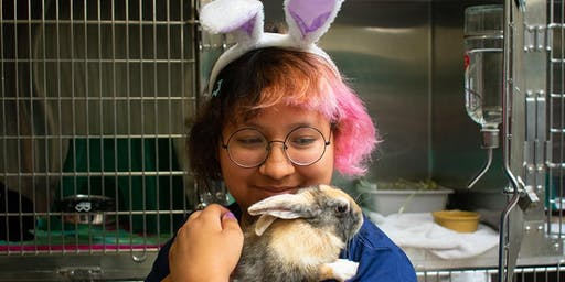 Animal Adventurers Workshop: Careers in Wildlife & Critter Care (Kids 8-12)
