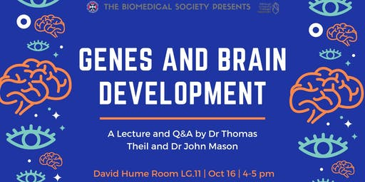 Genes and Brain Development