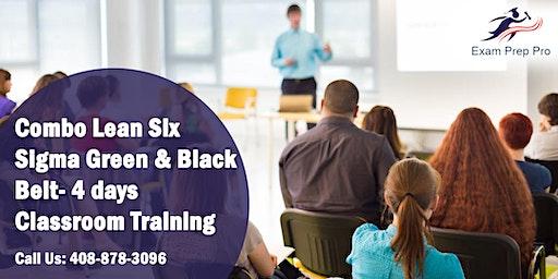 Combo Lean Six Sigma Green Belt and Black Belt- 4 days Classroom Training in Minneapolis,MN