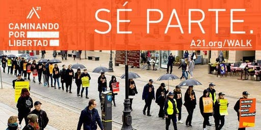 Caminando por Libertad - San Miguel de Allende 2019