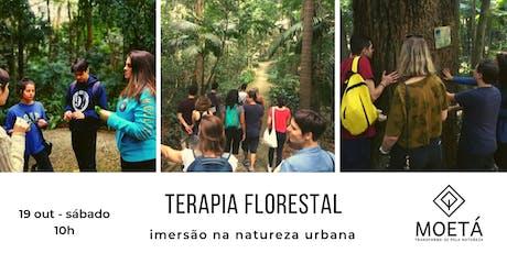 Terapia Florestal - imersão na natureza ingressos