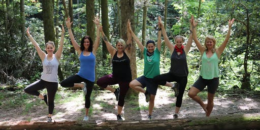Donation Yoga Hike: Save Local Forests and Wetlands