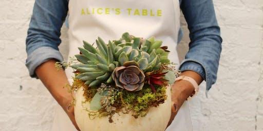 Succulent & Pumpkin Centerpiece! with Alice's Table