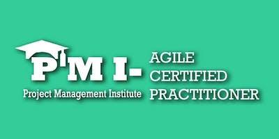 PMI-ACP (PMI Agile Certified Practitioner) Certification in Little Rock, AR