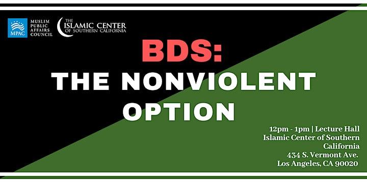 BDS: The Nonviolent Option image