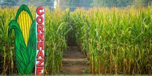 SWE NCounty Corn Maze event