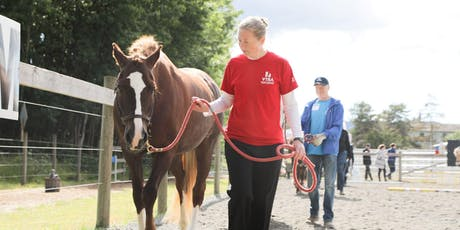 Advanced Horse Handling - Helping Your Horse Succeed!  tickets