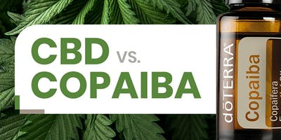 CBD vs Copaiba (Live - In-person)