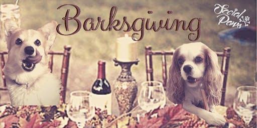 Barksgiving '19