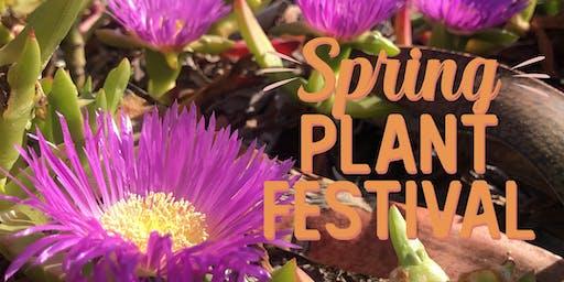 Spring Plant Festival