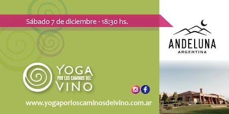 Yoga por los Caminos del Vino - Bodega Andeluna (al atardecer) entradas