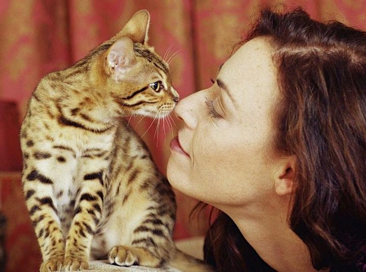 Emotional Support Animal Letter image