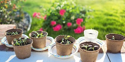 Low Cost Gardening – Adult Event