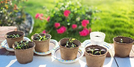 Low Cost Gardening - Adult Event