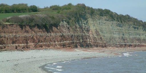 Lavernock, South Wales - GEOLOGICAL AND FOSSIL FIELD TRIP