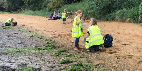 Ramsholt, Suffolk - GEOLOGICAL AND FOSSIL FIELD TRIP tickets