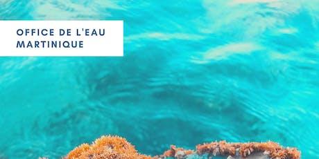 Comment concilier les usages de la mer avec la préservation du milieu marin ? billets