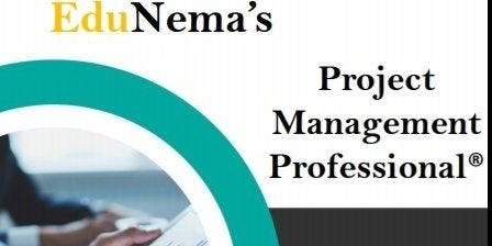 PMI-USA International Project Management Certification Course