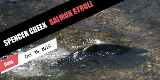Spencer Creek Salmon Stroll