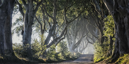 Game of Thrones® Tour from Belfast including Giant's Causeway (Sep19-Dec19)