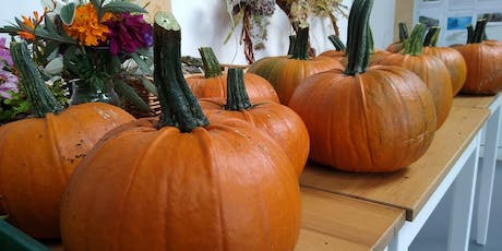 """""""No Mess"""" Pumpkin Carving for Kids tickets"""