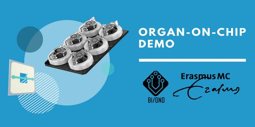 Organ-on-Chip Demo