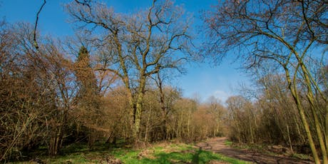 Woodland Open Day - Practical Taster Session (1.30 - 3.30pm) tickets