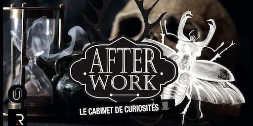 Afterwork : le Cabinet de Curiosités !