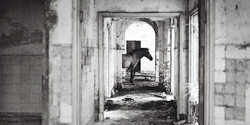 ADGTalk #22 | Mariano Herrera: la construcción de la imagen fotográfica