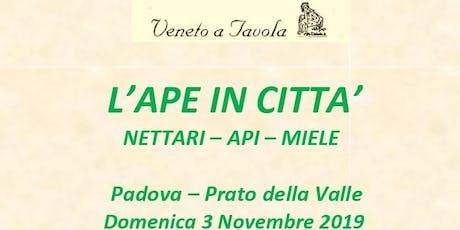 L'Ape in Città tickets