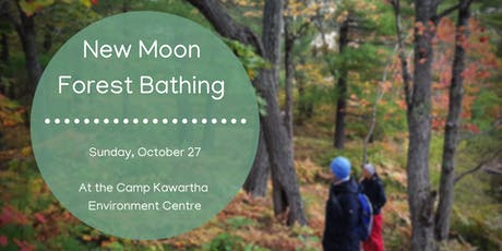 New Moon Forest Bathing tickets