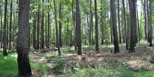 Info Meeting NC Statewide Forest Wood Products Marketing Kenansville Dec 4