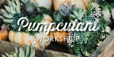 Pumpculant Workshop