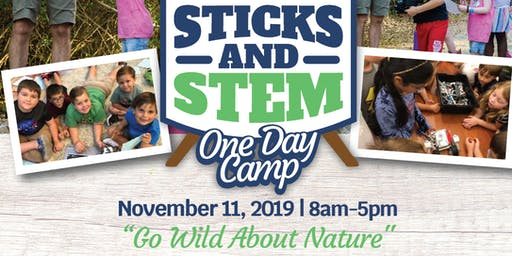 Sticks and STEM One Day Camp