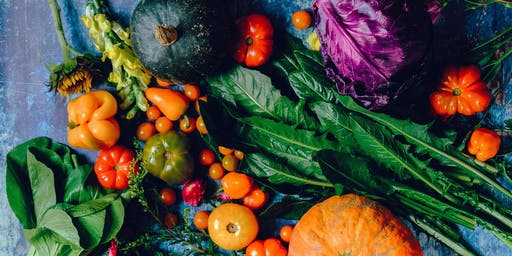 Planning your Veg Garden Course / Cwrs Cynllunio'ch Gardd Lysiau