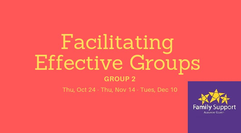 Group 2 - Facilitating Effective Groups: Professional Learning Community