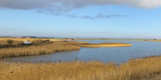 Spotlight Tour at RSPB Titchwell Marsh