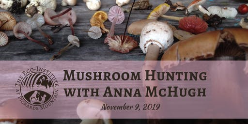 Mushroom Hunting with Anna McHugh - Morning Session