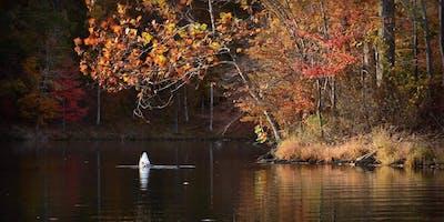Friends of Ten Mile Creek Fall Color Pontoon Boat Tour