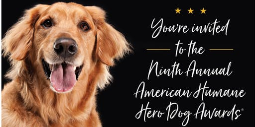 HERO DOG AWARDS Watch Party!