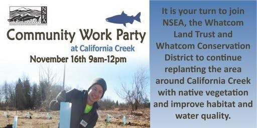 California Creek Work Party