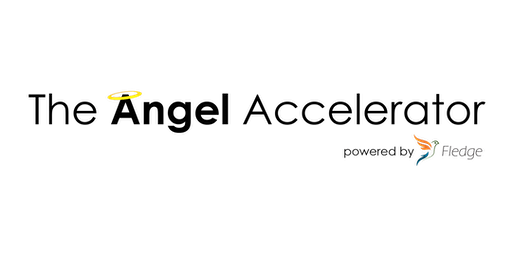 Angels, Accelerators and the Yellow Flags of Startups and Startup Investing