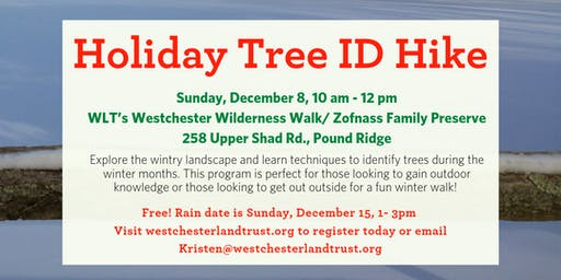 Holiday Tree ID Hike