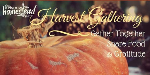 Homestead Harvest Gathering